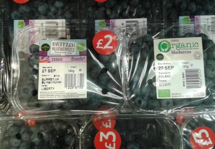 Tesco - organic blueberries